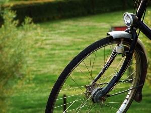 Domenica al parco: alla scoperta di Terranegra in bicicletta