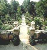 Orto Botanico – Via Orto Botanico 15 (Padova)