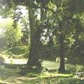 Parco Treves de' Bonfili – Via B. d'Albiano (Padova)