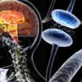 'La Parola ai Parkinsoniani: I Medici ascoltano'