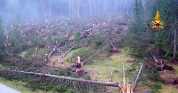 Cause ed effetti della devastazione nell'area montana triveneta