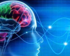 Modelli e metafore per pensare. Tra scienza, religioni e filosofie