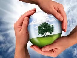 Nasce il Festival della Sostenibilità