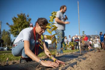 Riforestazione urbana PadovaO2