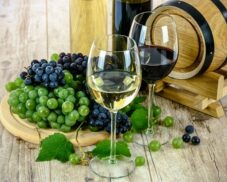 Vine-growing and winemaking in the Roman World