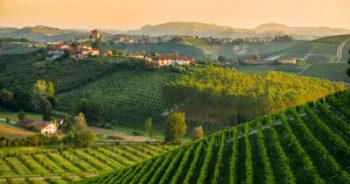 Paesaggio. Azioni per la sostenibilità e la resilienza